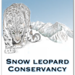 Snow-Leopard-Conservancy