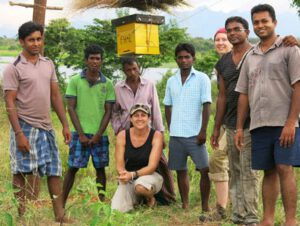 bijen tegen overlast olifanten