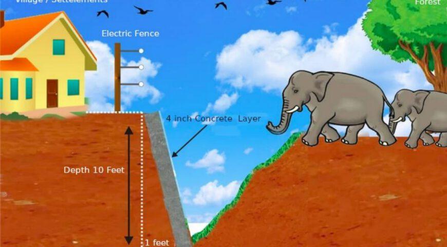 Elephant Fence Human-Elephant conflict Yala NP