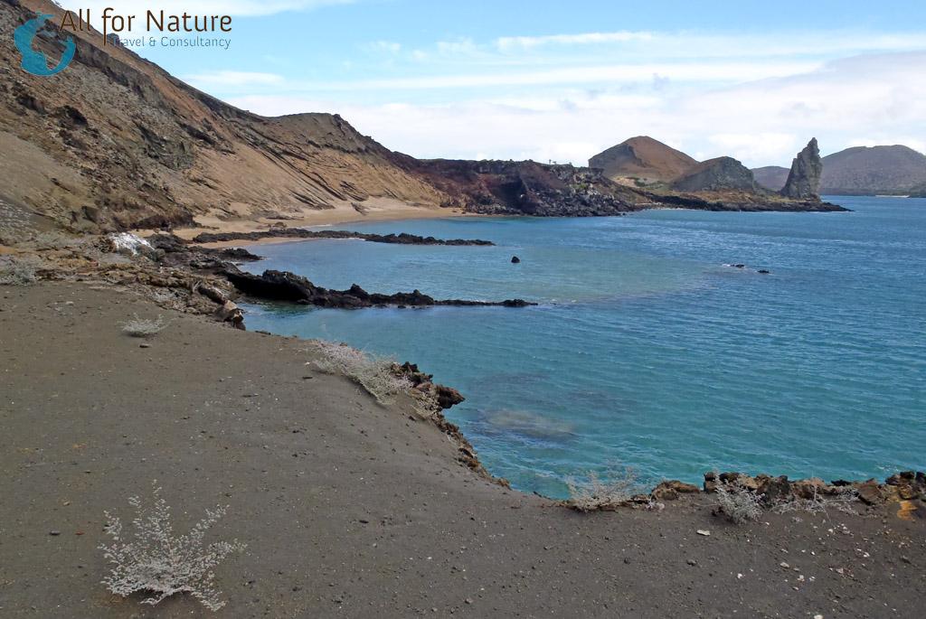 reis Galápagos