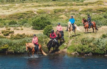 Paardrijden vanaf hotel Hjerkinn Fjellstue og Fjellridning