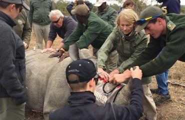 Hands-on-rhino-conservation