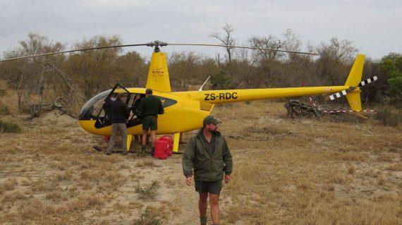 ranger bij helikopter voor zenderen neushoorn
