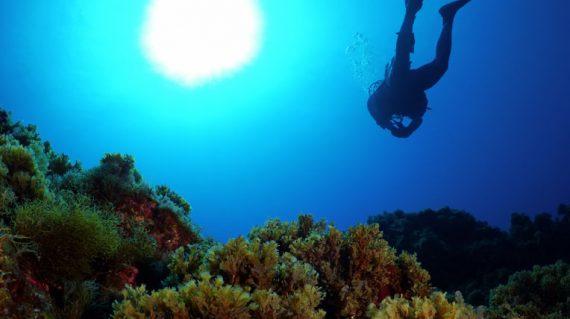duiken Santa Maria