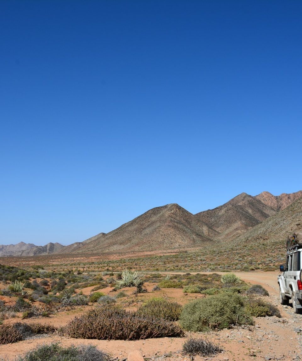 Selfdrive Zuid-Namibie © All for Nature Travel