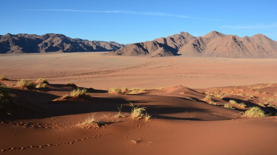 Namib Naukluft © All for Nature Travel