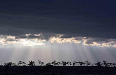 skyline Masai Mara