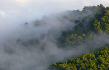 Abruzzo NP ©Umberto