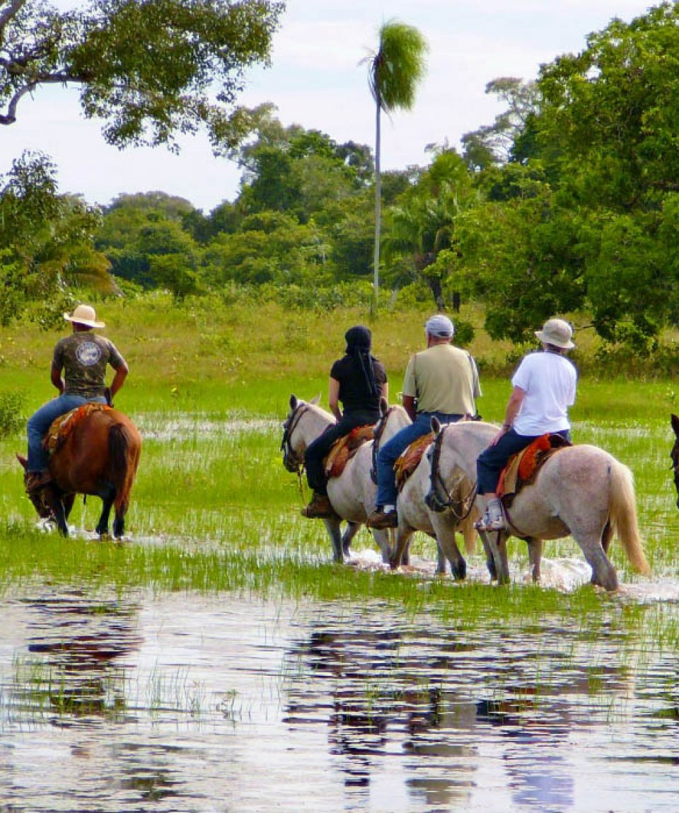Te paard door de Pantanal bij Araras