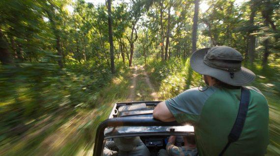 Op safari in Bardia NP