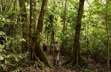 Yasuni regenwoud ©All for Nature Travel