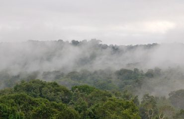 Mist over Amazoneregenwoud © All for Nature Travel