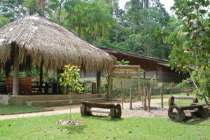 Cristalino lodge, Amazone