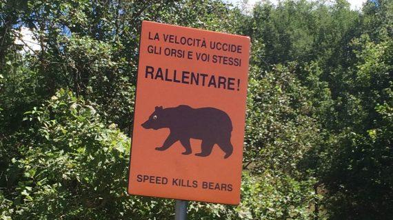 Berenproject Abruzzo