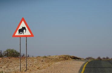 selfdrive Namibie ©All for Nature Travel