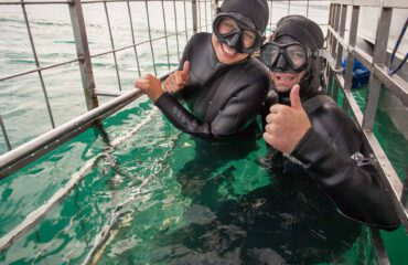 Cage Diving Grootbos