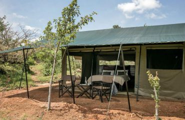 Basecamp Wilderness Camp, Masai Mara