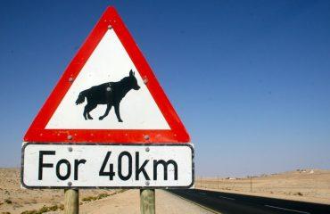 Verkeersbord Luderitz Bruine hyena ©brown hyeana project Namibie