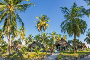 Butiama Beach huisjes, huisje Mafia Island