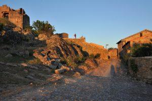 Castelo Rodrico, reis Faia Brava