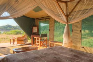 glamping South Luangwa National Park, glamping Zambia