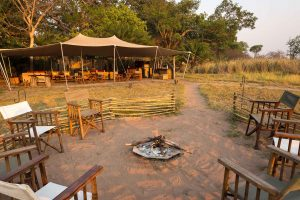 Busanga Bush Camp, Kafue