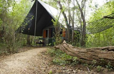 Mahoora Premium Tent