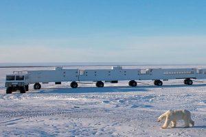 mobiele lodge, hotel ijsberen