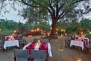 Reni Pani Jungle hotel, hotel Satpura Tiger Reserve