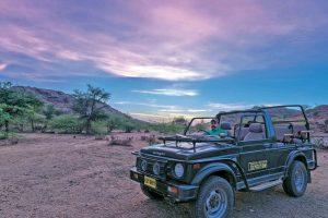 Bera Safari Lodge, safari Bera