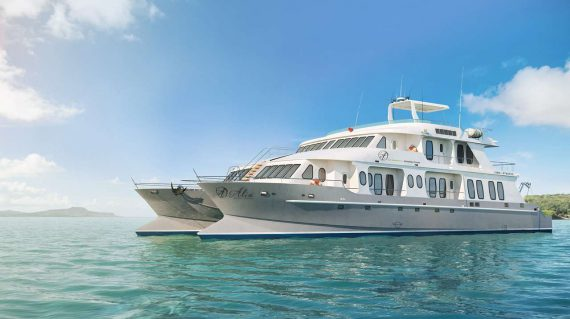 Alya Catamaran Galapagos Wildlife Cruise