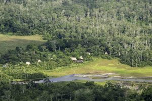 Lango Bai, Congo, Odzala