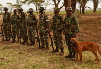 Dog Patrol Unit Lewa