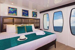 steppes, wildlife cruise, galapago