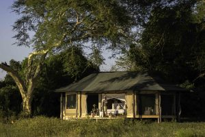kuthengo, liwonde, tented camp