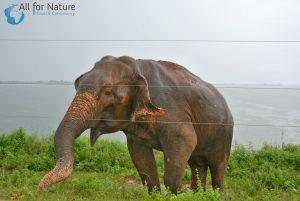 Sri Lanka reis