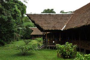 Tambopata, Amazone , peru