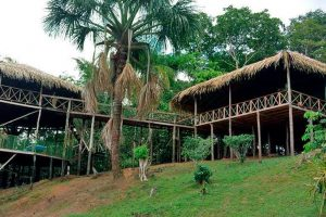 Amazon Tupana Jungle lodge, Amazone reis
