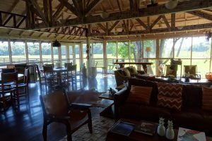 Caiman Refugio Ecologico Cordilheira, reis pantanal, jaguar reis, oncafari