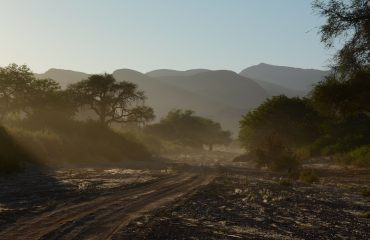 morning game drive hoanib valley ©All for Nature Travel