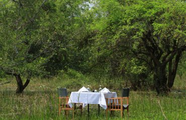 Dinner in the Bush Mahoora