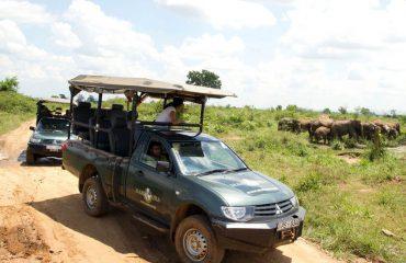 Mahoora Jeepsafari