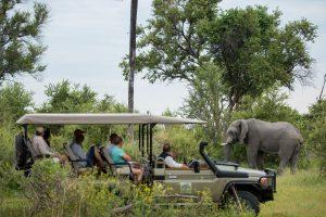 Okavango safari, Okavango reis, Machaba, Gomoti