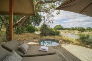 safari met plunge pool