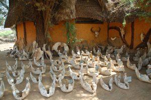 Elephant Watch Camp safari, reis kenia,save the elephants, safari samburu