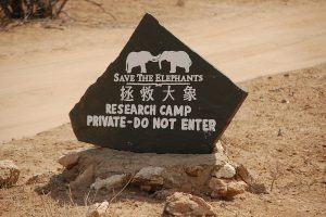 Elephant Watch Camp safari, reis kenia,save the elephants, safari samburu