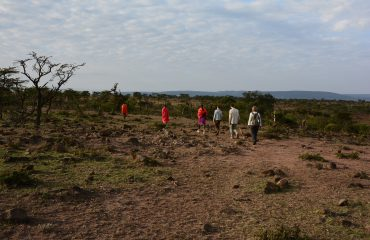 Walking with the Maasai