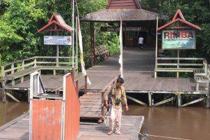Rimba, Ecolodge Rimba, Tanjung Puting, Borneo