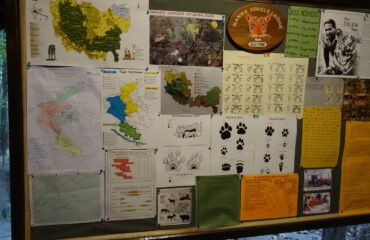 Studie bord Kanha Jungle Lodge