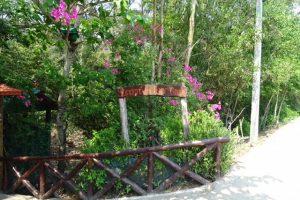 Sunderban Tiger Camp, Sundarbans, reis, bootsafari